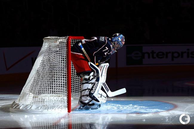 Профессиональные хоккейные ворота